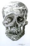 billabong Skull Surf SceneTee shirt design by Phil Roberts