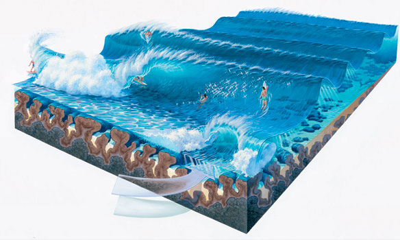 Book of Waves illustration Phil Roberts