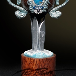aloha cup trophy by Phil Roberts